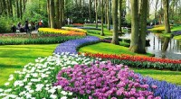 Amsterdam the capital of the Land of Flowers… nowhere better signifies the coming of spring than in Amsterdam. Nederland bookings, vacation package  here. to the Nederlands here. Sun filled days tease […]